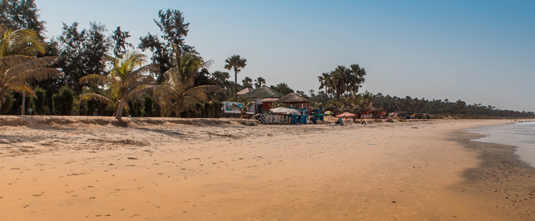 Beach in The Gambia llined with palm trees and straw huts