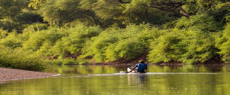 Man riding on a small boat down the River Gambia surrounded by green trees